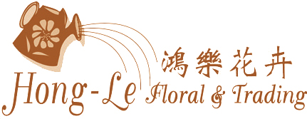 Hong-Le Floral & Trading